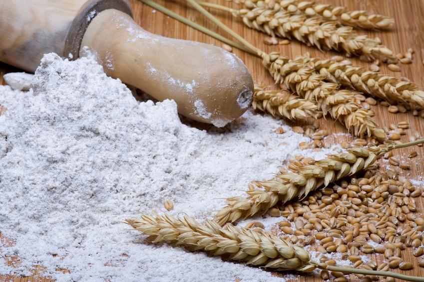 Enero 2017 ciencias para normales - Harina integral de trigo ...